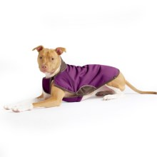 Gold Paw Cascade Winter Dog Coat in Eggplant/Chocolate - Closeouts