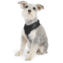Gold Paw Crossover Harness in Black - Closeouts