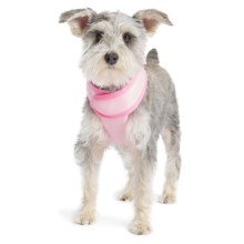 Gold Paw Crossover Harness in Pink - Closeouts