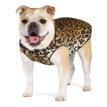Gold Paw Stretch Fleece Pullover Dog Sweater in Leopard - Closeouts