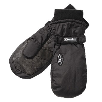 Grandoe Two Pounder Mittens - Waterproof, Insulated (For Women) in Black