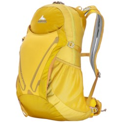 Gregory Fury 24 Daypack in Electric Yellow