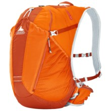 Gregory Miwok 22 Backpack in Spark Orange - Closeouts