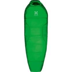 Haglofs -4°F Zensor Nordic Winter Sleeping Bag - Mummy in Amazon Green/Ginko Green
