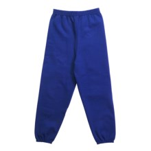 Hanes Comfort Blend Sweatpants (For Youth) in Royal - 2nds