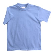 Hanes Heavyweight 50/50 T-Shirt - Short Sleeve (For Youth) in Light Blue - 2nds