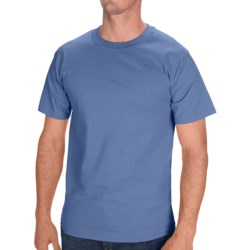 Hanes Tagless Cotton T-Shirt - Short Sleeve (For Men and Women) in Blue Grey