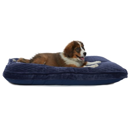 "Happy Tails Velour Quilted Gusseted Dog Bed - 40x28"" in Royal"