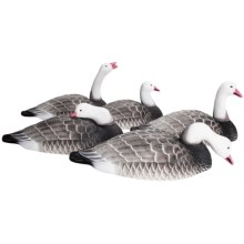 Hardcore Blue Goose Shell Feeder Decoy - 12-Pack in See Photo - Closeouts
