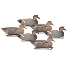 Hardcore Gadwall Duck Decoys - 6-Pack in See Photo - Closeouts