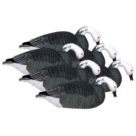 Hardcore Pro-Series Blue Goose Shell Feeder Decoys - 6-Pack in See Photo - Closeouts