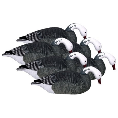 Hardcore Pro-Series Blue Goose Shell Feeder Decoys - 6-Pack in See Photo
