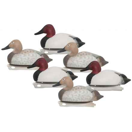 Hardcore Pro-Series Canvasback Decoys - 6-Pack in See Photo - Closeouts