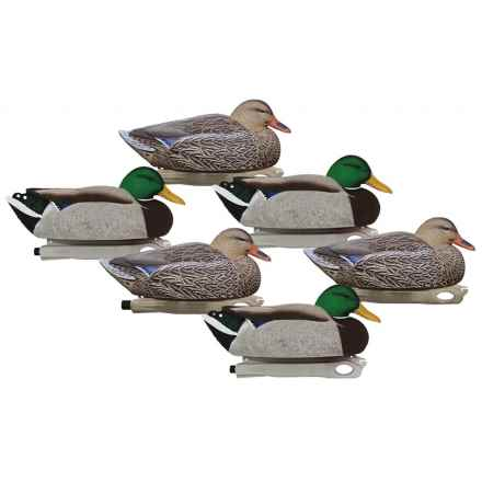 Hardcore Pro-Series Floater Magnum Mallard Decoys - 6-Pack in See Photo - Closeouts
