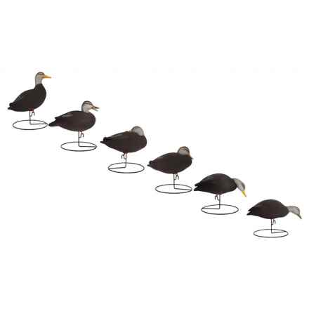 Hardcore Pro-Series Full Body Black Duck Touchdown Decoys - 6-Pack in See Photo - Closeouts