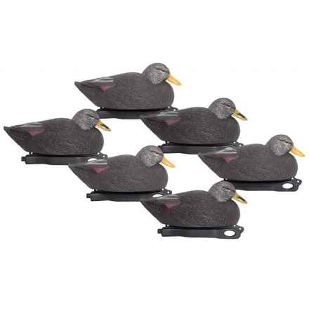 Hardcore Pro-Series Magnum Black Duck Decoys - 6-Pack in See Photo - Closeouts