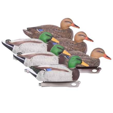 Hardcore Pro-Series Standard Mallard Decoys - 6-Pack in See Photo - Closeouts