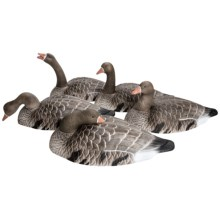 Hardcore Speck Goose Shell Touchdown Decoy - 12-Pack in See Photo - Closeouts
