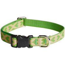 Harry Barker Eton Dog Collar - Recycled PET in Puppy Love Green/Yellow - Closeouts