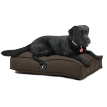 """Harry Barker Solid Rectangle Bed - Large, 44x36"""" in Brown - Closeouts"""