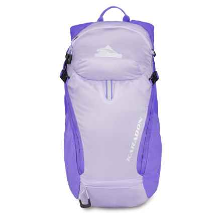 High Sierra Karadon 10L Backpack - Internal Frame (For Women) in Orchid/Amethyst - Closeouts