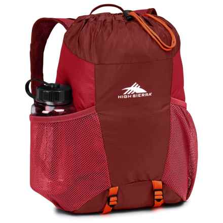High Sierra Pack-N-Go 2 15L Backpack in a Bottle - BPA-Free in Brick Red/Carmine/Red Line - Closeouts