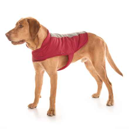 Humane Society Melissa Dog Jacket in Red - Closeouts