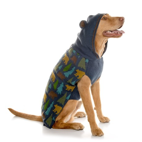 Humane Society Woody Dog Sweater in Blue