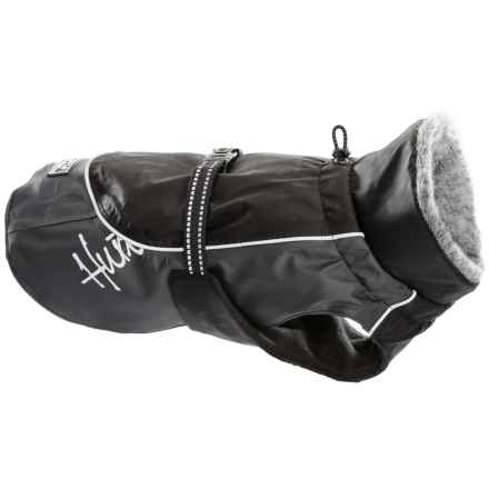 Hurrta Winter Dog Jacket - Waterproof in Black - Closeouts