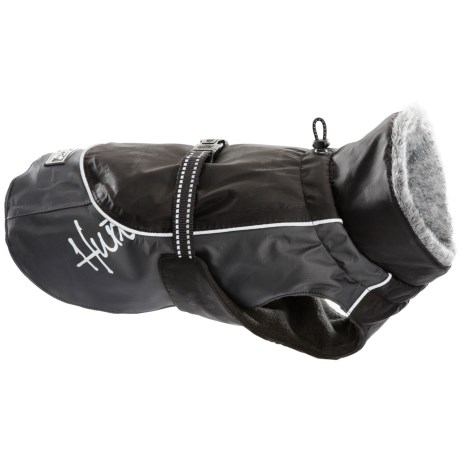 Hurrta Winter Dog Jacket Waterproof