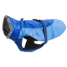 Hurrta Winter Dog Jacket - Waterproof in Blue - Closeouts