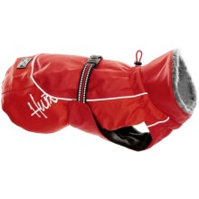 Hurrta Winter Dog Jacket - Waterproof in Red - Closeouts