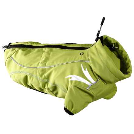 Hurtta Frost Dog Jacket in Birch - Closeouts