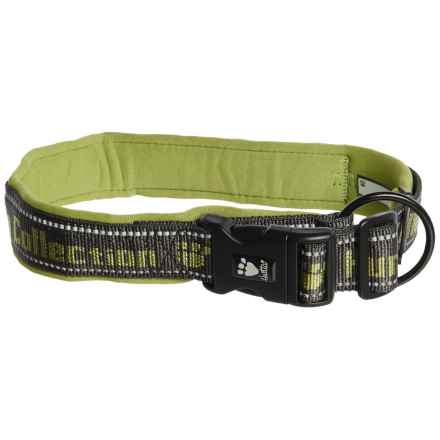 Hurtta Padded Dog Collar in Birch - Closeouts