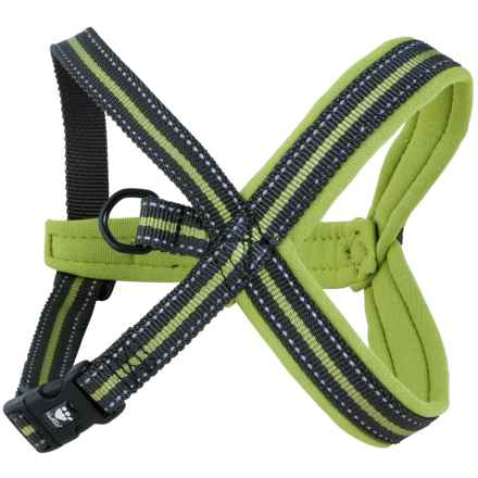 "Hurtta Padded ""Y"" Dog Harness in Birch - Closeouts"