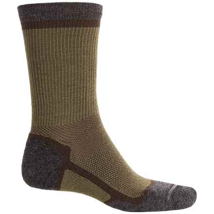 Ibex Hiker Socks - Merino Wool Blend, Crew (For Men and Women) in Acorn/Archer - Closeouts