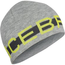 Icebreaker 320 Beanie Hat - Merino Wool (For Men and Women) in Metro - Closeouts