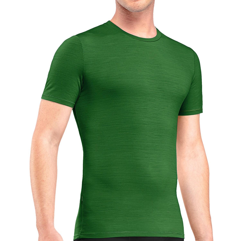 icebreaker anatomica t shirt for men save 50. Black Bedroom Furniture Sets. Home Design Ideas