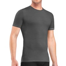 Icebreaker Anatomica T-Shirt - UPF 30+, Merino Wool, Short Sleeve (For Men) in Monsoon/White - Closeouts