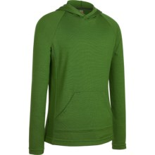 Icebreaker Bodyfit 260 Adventure Hoodie Sweatshirt - UPF 50+, Merino Wool (For Kids) in Grass - Closeouts
