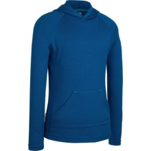 Icebreaker Bodyfit 260 Adventure Hoodie Sweatshirt - UPF 50+, Merino Wool (For Kids) in Isle - Closeouts