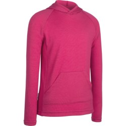 Icebreaker Bodyfit 260 Adventure Hoodie Sweatshirt - UPF 50+, Merino Wool (For Kids) in Ruby
