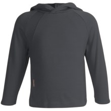 Icebreaker Bodyfit 260 Explorer Hoodie Sweatshirt - Merino Wool, Lightweight, UPF 39+ (For Kids) in Charcoal - Closeouts