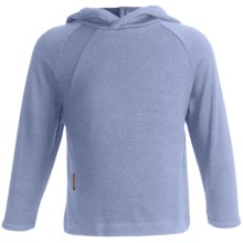 Icebreaker Bodyfit 260 Explorer Hoodie Sweatshirt - Merino Wool, Lightweight, UPF 39+ (For Kids) in Petrel - Closeouts