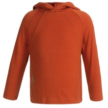 Icebreaker Bodyfit 260 Explorer Hoodie Sweatshirt - Merino Wool, Lightweight, UPF 39+ (For Kids) in Seville - Closeouts