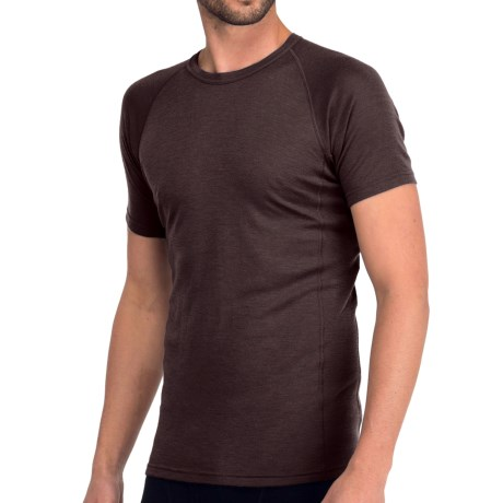 Icebreaker Everyday Bodyfit 200 Crew Neck Shirt - UPF 20+, Merino Wool, Short Sleeve (For Men) in Walnut