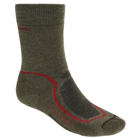 Icebreaker Hike + Mid Crew Socks - Merino Wool (For Men) in Cargo/Red/Ivy Heather