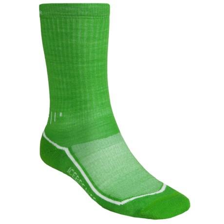 Icebreaker Hike Lite Socks - Merino Wool, Crew (For Men) in Turf