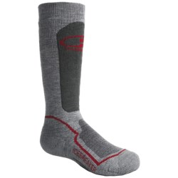 Icebreaker Hike Medium Cushion Socks - Merino Wool, Crew (For Kids) in Grey Heather/Red