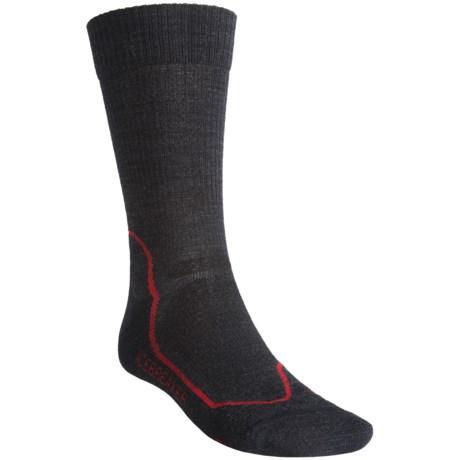 Icebreaker Hike+ Lite Crew Socks - Merino Wool (For Men) in Jet/Black/Red